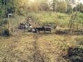 fåren 2